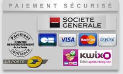 Paiement sécurisé paypal, kwixo et carte bancaire